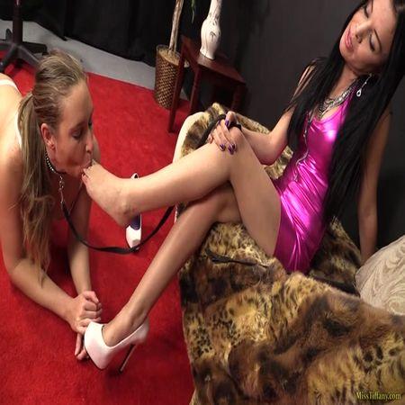 Miss Tiffany - Ashlynn is sucking my shoes and feet