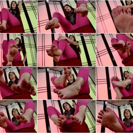 EMBRACING YOUR FOOT ADDICTION (Princess Ellie Idol)